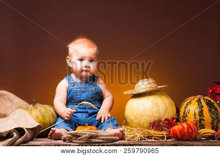 Thanksgiving Holiday, Cute Baby With The Crop