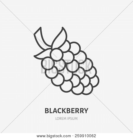 Blackberry Flat Line Icon, Forest Berry Sign, Healthy Food Logo. Illustration Of Dewberry, Bramble F