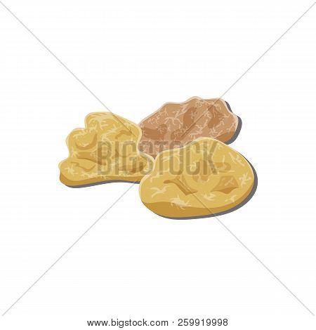 Frankincense, Amber, Myrrh, Pieces Of Gum, Resin, Tar, Semiprecious Stones. Vector.