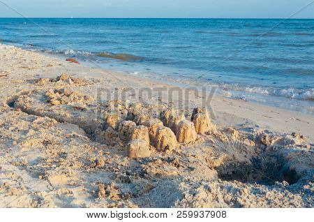 Seashore Beach With Sand, Footprints In The Sand, Sand And Seashells Summer