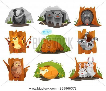 Cute Animals Sitting In Burrows And Hollows Set, Badger, Wolves Cubs, Hedgehog, Squirrel, Bear Cub,
