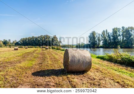Large Roll Of Harvested Hay In The Foreground. The Hay Roll Is Wrapped With Air-permeable Mesh. The