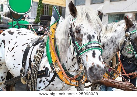 Horse-driven carriage at Hofburg palace, Vienna, Austria