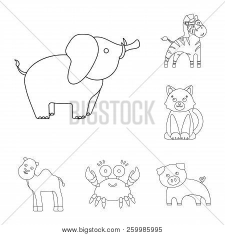 An Unrealistic Outline Animal Icons In Set Collection For Design. Toy Animals Vector Symbol Stock We
