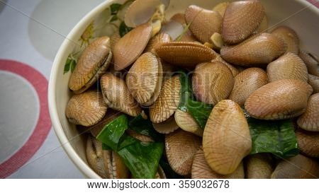 Close Up View Of The Lala Or Saltwater Clams Cooked With Oyster Sauce, Ginger, Garlic And Onions In