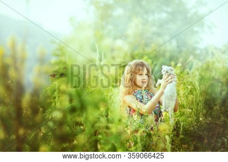 Girl With White Pedigreed Cat In Her Arms In A Blue Sundress