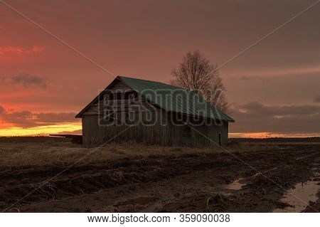 An Old Barn House Stands On The Wet Fields Of The Rural Finland. The Snow And Ice Are Slowy Melting