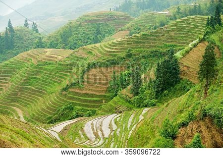 The Longsheng Rice Terraces In Longsheng County About 100 Km From Guilin, China.