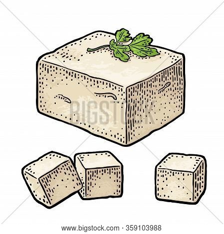Tofu. Vector Color Vintage Engraved Illustration Isolated On White Background.