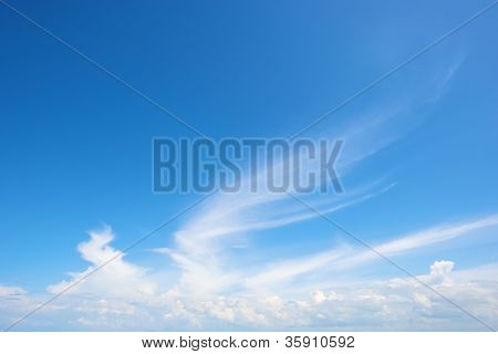 wing-shaped cloud in bright blue at summer day