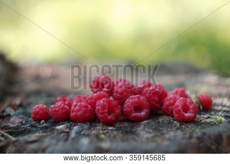 Ripe raspberries on wooden background. Fresh Raspberry on a wooden surface in the sunny forest. Raspberry jam. Healthy eating