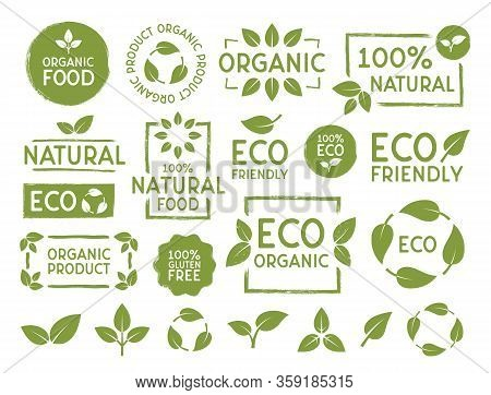 Set Of Eco, Bio, Organic And Natural Products Stickers, Labels, Badges And Logo. Ecology Icons Set.