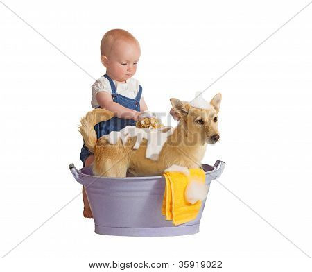 Baby Washing Dog