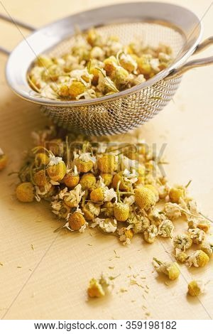 Dried chamomile flowers in a tea strainer and next to it. Matricaria chamomilla.