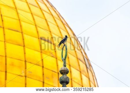 Jerusalem, Israel, March 3, 2020 : A Crow Sits On A Muslim Symbol At The Top Of Dome Of The Chain, A