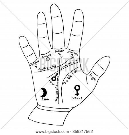 Hand For Palmist, Palm Reading Card. Vector Hand-drawn Illustration Isolated On White Background.