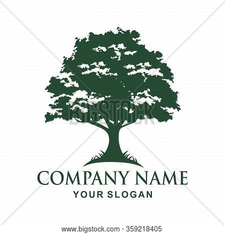 Decorative Tree. Tree Logo Template. Tree Icon Design - Vector, Tree Icon Concept Of A Stylized Tree