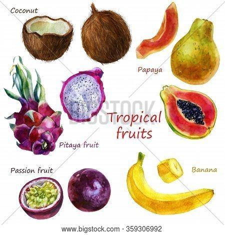 Watercolor Illustration Of A Set Of Tropical Fruits. Pitahaya, Coconut, Papaya, Banana, Passion Frui