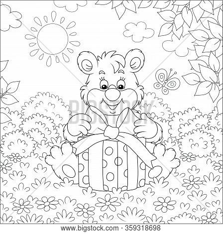 Friendly Smiling Little Bear Holding A Beautiful Box With A Holiday Gift On A Pretty Forest Glade On