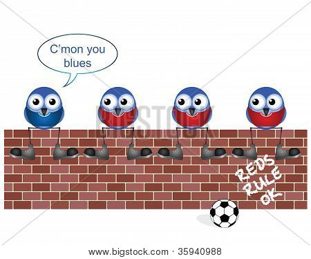 Brave Blues soccer fan in Reds territory isolated on white background poster