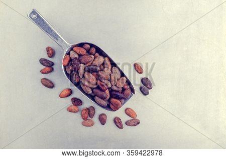 Roasted Cocoa Beans