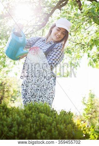 Woman gardener watering bushes in the garden