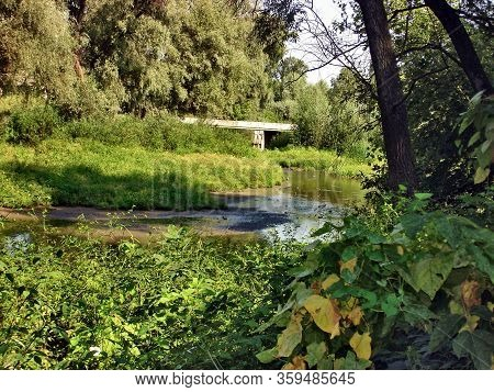 A Forest Stream Flows In The Dense Greenery Of Trees. A Concrete Bridge Is Thrown Over The Stream. T