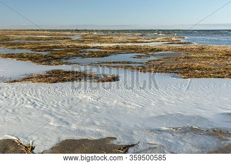 Seaweed And Foam On The Shore Of Lake Kamyslybas, Large Saltwater Lake In The Kyzylorda Region Of Ka