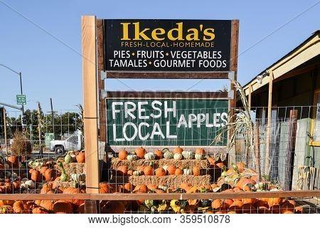 Davis, California, Usa, 5 October 2016. Ikedas California Country Market . Pumpkin Patch At Mace Bou