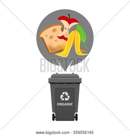 Organic Waste And Grey Recycling Plastic Bin Isolated On White Background, Plastic Bin And Organic G