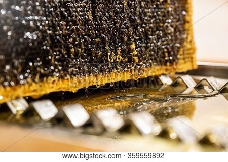 Glossy Yellow Golden Honey Comb Reflection Mirror Sweet Honey Drips Flow During Harvest Background W