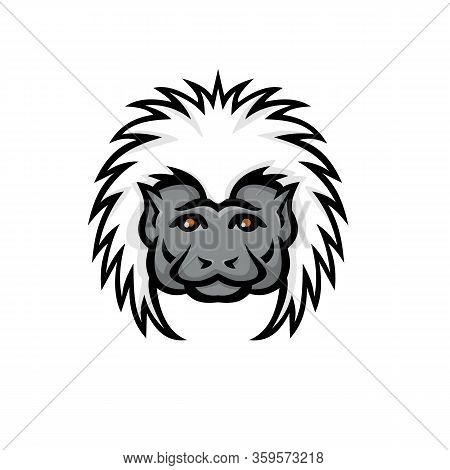 Mascot Icon Illustration Of Head Of A Cotton Top Tamarin Monkey Viewed From Front On Isolated Backgr