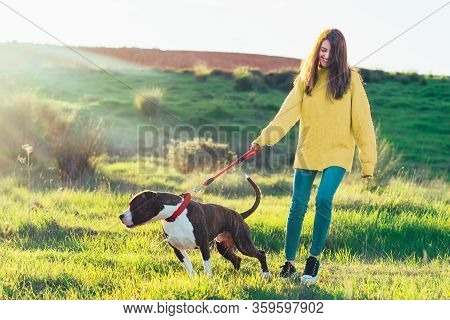 Woman Walking Her Dog In The Field