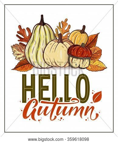 Hello Autumn Hand Drawn Lettering Text With Autumn Leaves And Pumpkins. Rowan And Oak Leaves With Go