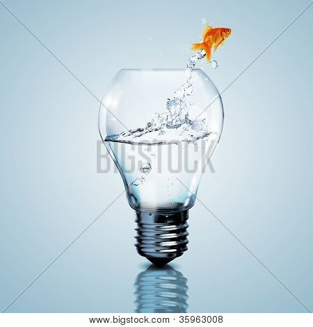 Gold fish in water inside an electric light bulb poster