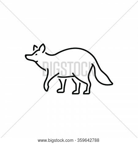 Black Line Icon For Raccoon Omnivorous Nature Animal Jungle Wildlife Zoo