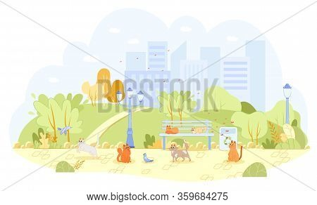 Lot Stray Cats In City Park Unattended, Cartoon. Cute Cats With Different Colors Live On Street. The