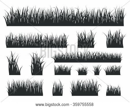 Grass Silhouettes. Black Tufts Forest Lawns. Isolated Natural Herbal Field Border. Spring Summer Sea