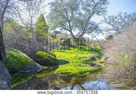 River Muelas Backwaters Close To Rugidero Site, Cornalvo Natural Park, Extremadura, Spain