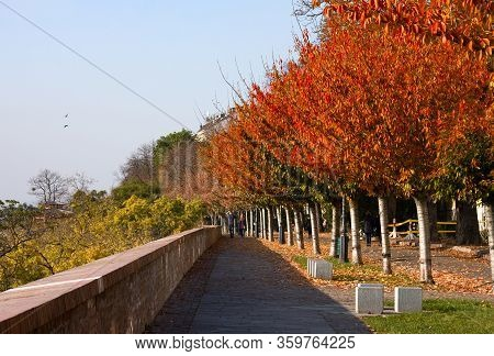 Autumn Street In Budapest On Buda Side. Buda Hills Is Huge Area In The West Part Of Budapest