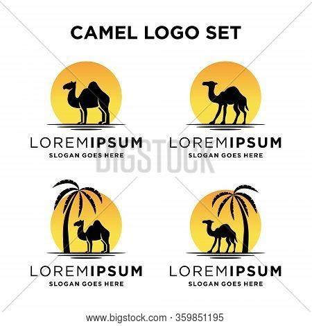 Camel Logo Design Template Vintage Camel Vector Illustration
