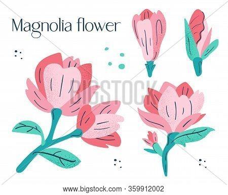Beautiful, Bloom, Blooming, Botanic, Botanical, Botany, Branch, Cartoon, Colorful, Design, Flat, Flo