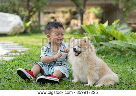 Asian Cute Baby Boy And Pomeranian Dog Siting On Green Grass In The Garden.