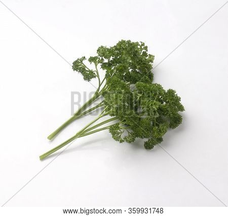 Bunch Of Fresh Curly Parsley Isolated On White Background