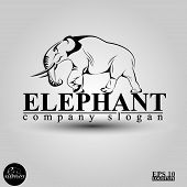 beautiful vector logo with a big elephant poster