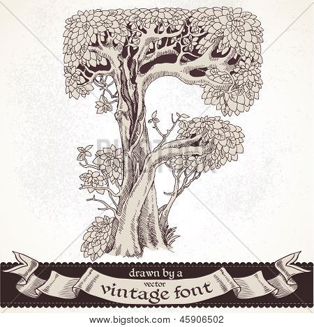 Fable forest hand drawn by a vintage font - F
