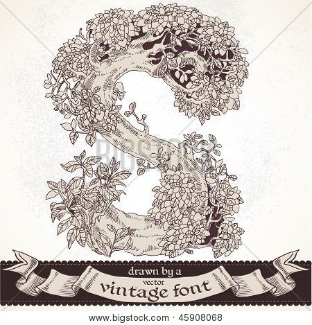 Fable forest hand drawn by a vintage font - S