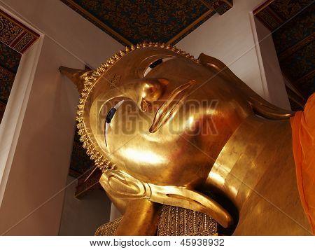 Buddha Head insides the Temple