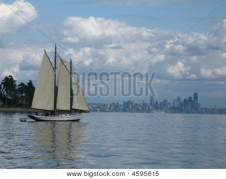 Sailboat In Puget Sound