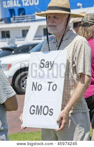 PENSACOLA, FL - 25 MAY: Protesters in Pensacola, FL gather on May 25, 2013 to support worldwide